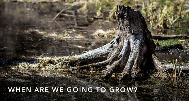 FI Gonna Grow